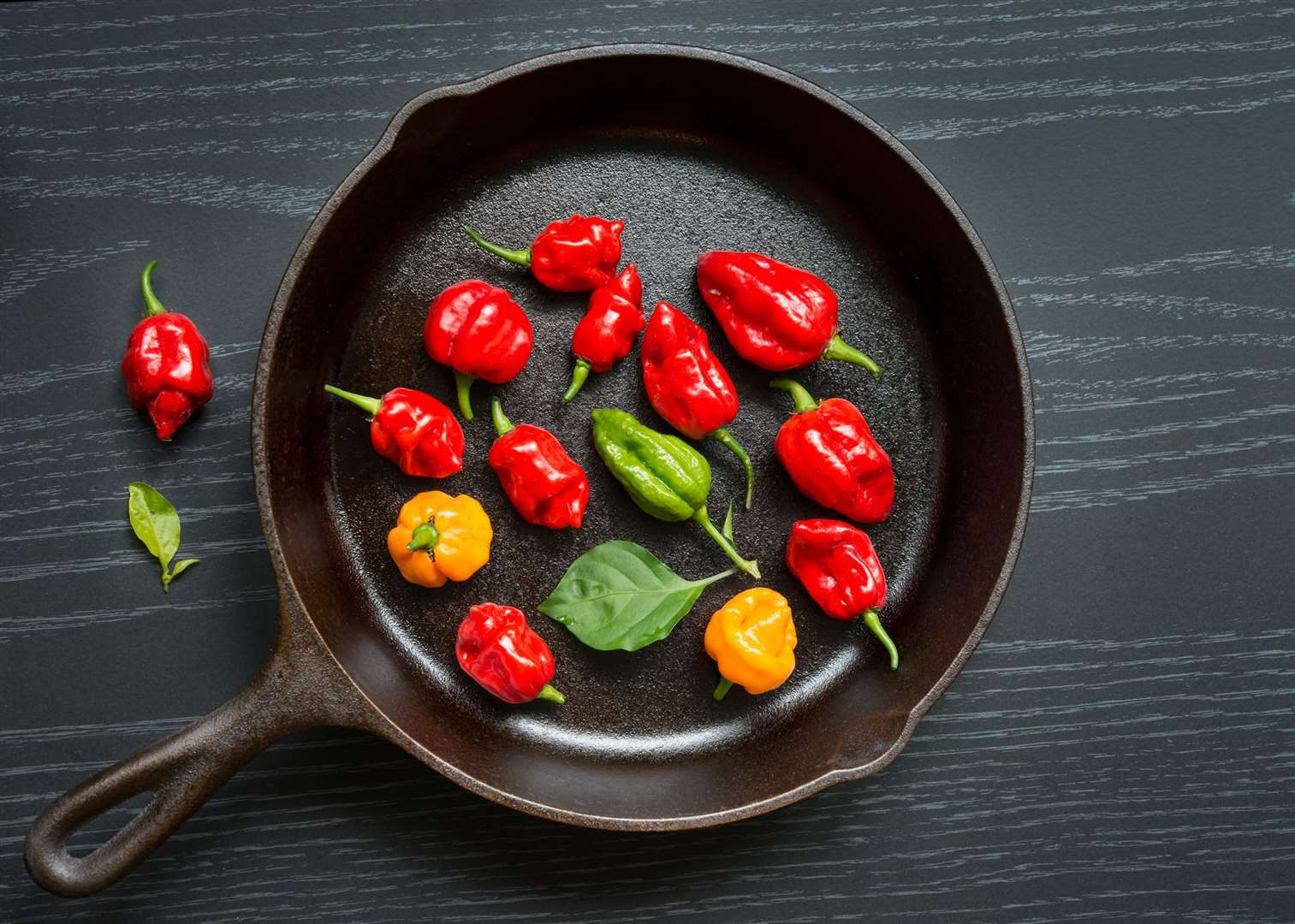 Chilli peppers - stock image (2) (44296764)